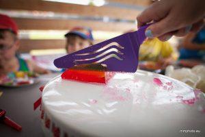 urodziny_farmerskie_07